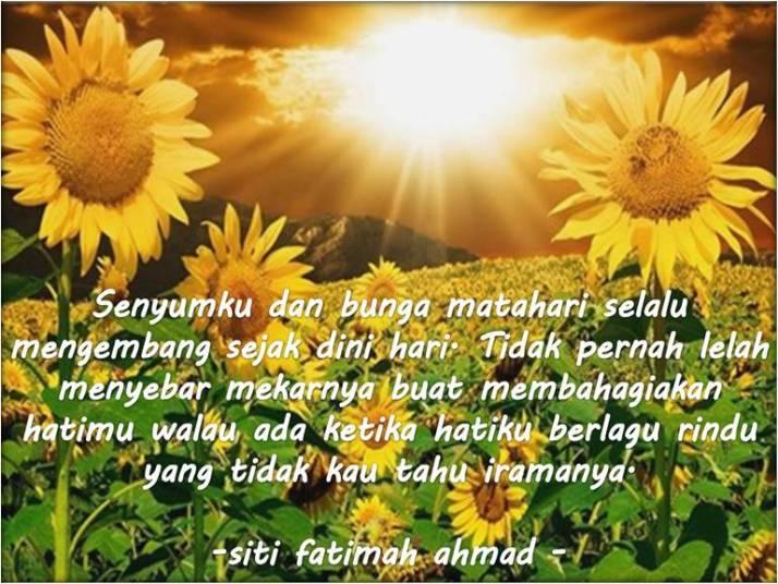 SunflowerFatimaku