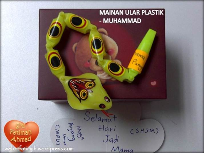 SweetFatima8UlarMainanAkram2014