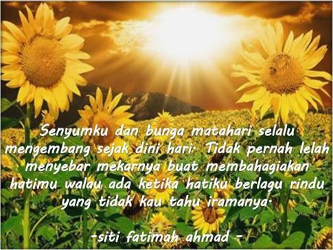 SunflowerFatimaku