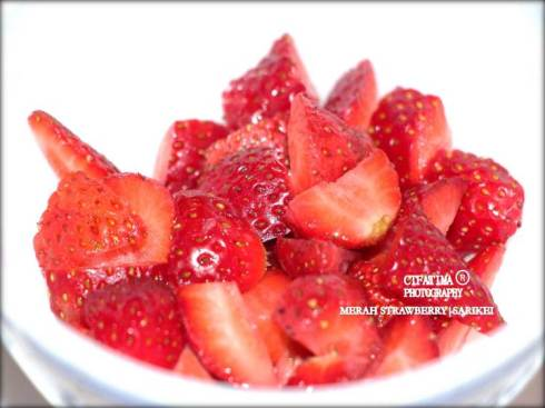BerryFatima8PotonganDadu