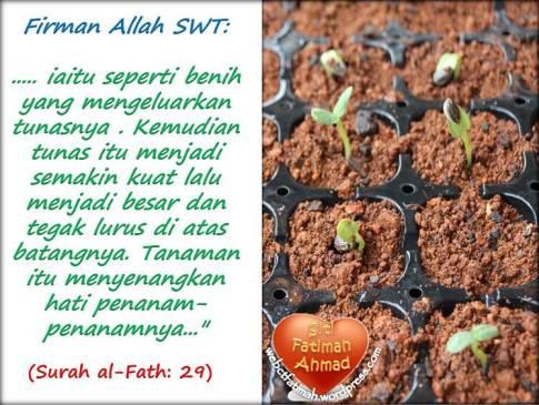 TunasFatima12surahAlFath.29