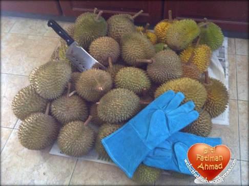 DurianFatima12Banyak2014