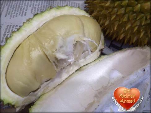 DurianFatima9Kembar