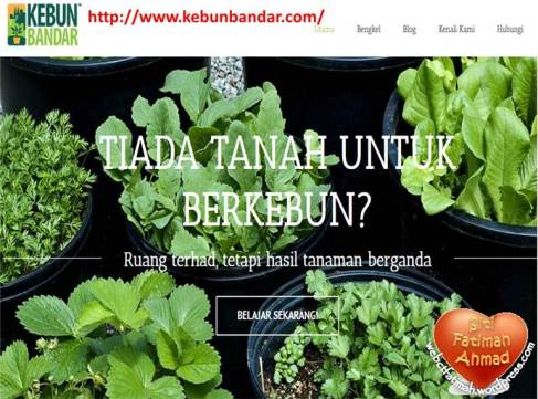TanamFatima3WebsiteKebunBandar.com