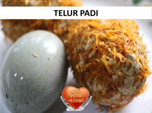 TPadiFatima7TelurPadi