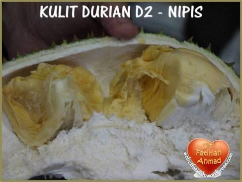 durianfatima11kulitnipisd2