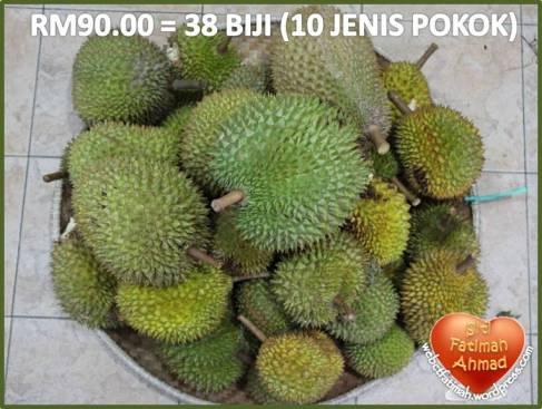 durianfatima7rm90-38biji