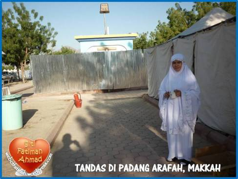 tandasarafahfatima8fatimaditandasarafah2011